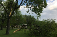 Property owners assessing hail, wind damage