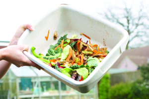 Reducing waste through composting is another easy way kids can embrace going green.