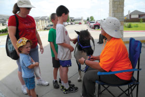 Families wait in line to pet the miniature horses during the 2015 Summer Reading Program.