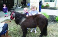 Pony tales at the library
