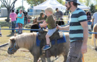 Video: Fallfest features pony riding lessons