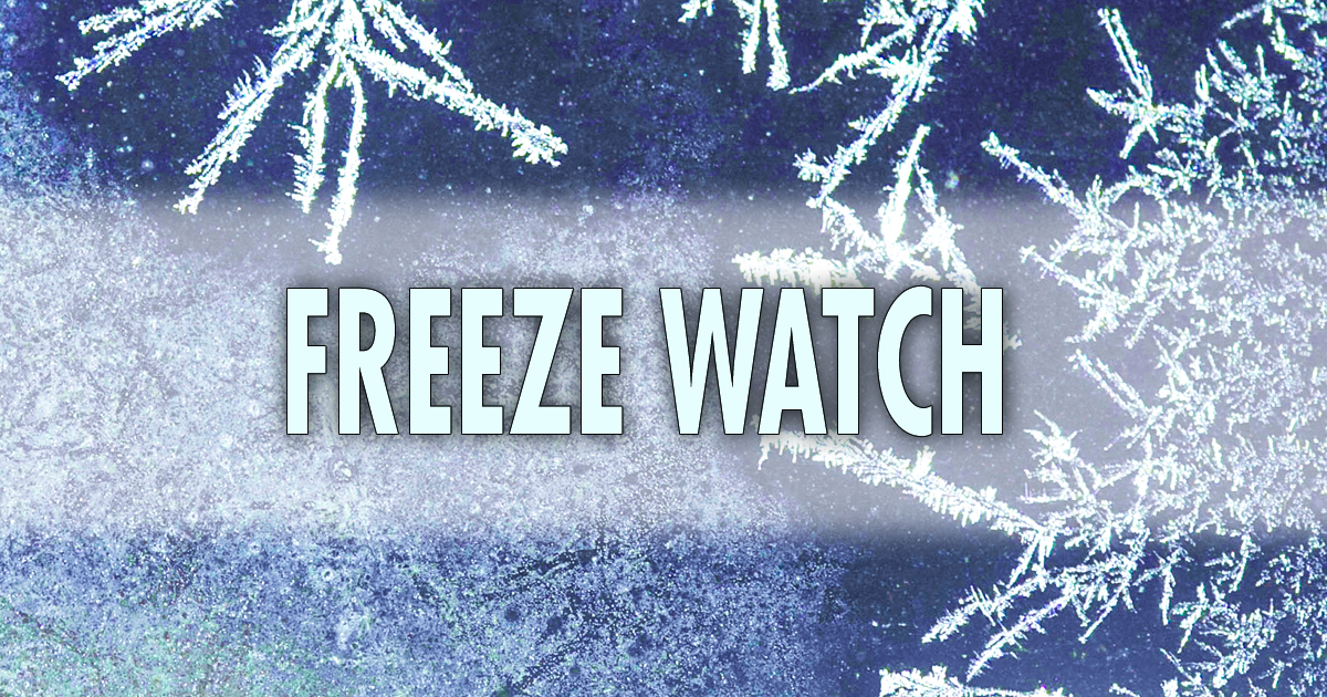 Freeze watch issued for this weekend