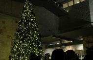 Video: Sachse kicks off holiday season