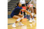 High hopes for SHS volleyball in 2020